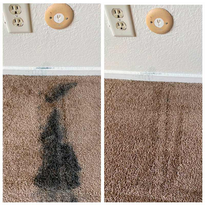 AEA House and Carpet Cleaning