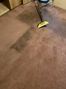 AEA House and Carpet Cleaning Gallery